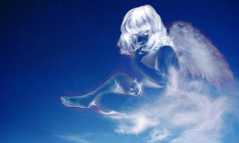 Segui l'angelo che è in te