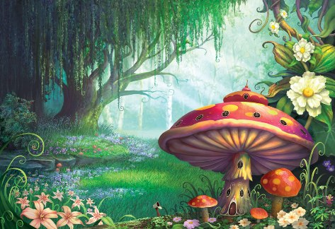 crescere-leggendo-fiabemie-fiabe-e-storie-del-bosco-incantato