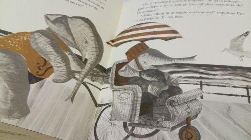 piccolo-elefante-cresce-orecchio-acerbo2